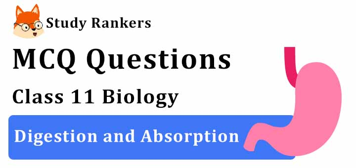 MCQ Questions for Class 11 Biology: Ch 16 Digestion and Absorption