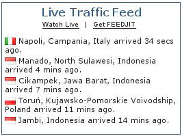 Cara Memasang Image Live Traffic Feedjit di WordPress