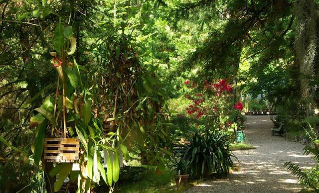 Informações sobre o Orto Botânico dell'Universitá di Siena