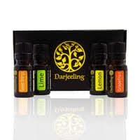 Paket Hemat 4 x 10ml Essential Oil Citrus Kit 100% Murni
