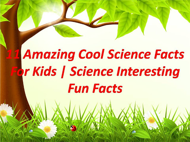 Amazing-Cool-Science-Facts-For-Kids-Universal-Links