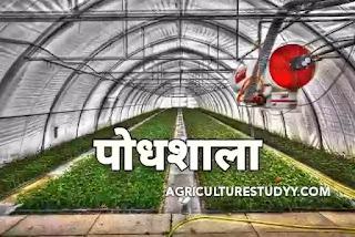 पौधशाला (plant nursery in hindi) क्या है इसके लाभ, उद्देश्य एवं उत्तम पौधशाला तैयार करने की विधियां, नर्सरी क्या है, नर्सरी को पौधशाला में कैसे तैयार