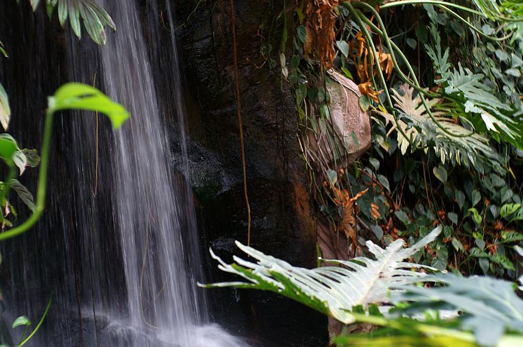 #062 Trioplan f2.8 50mm - Wasserfall im Tropemhaus der Wilhelma