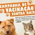 Vacine seu cão ou gato com a campanha de vacinação antirrábica na cidade e zona rural