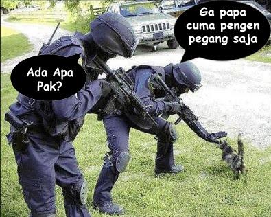 gambar polisi dan kucing