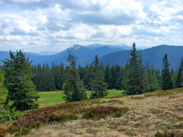 Виды с поляны на высоте 1300 м. Прямо по центру - Яйко Илемское (1680 м).