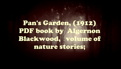 Pan's Garden