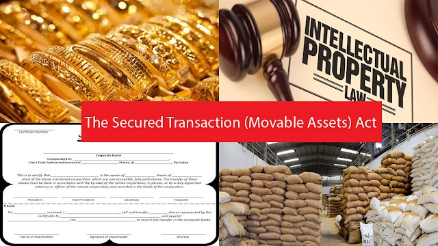 Proposed Law on Movable Assets as Collateral