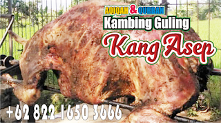 Empuk Tanpa Prengus ! Bakar Guling Domba di Lembang,bakar guling domba lembang,bakar guling domba,guling domba lembang,guling domba,
