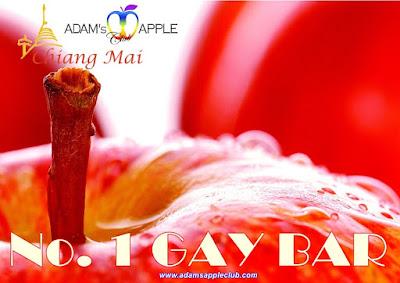 GAY BAR Adam's Apple Club Chiang Mai Adult Entertainment