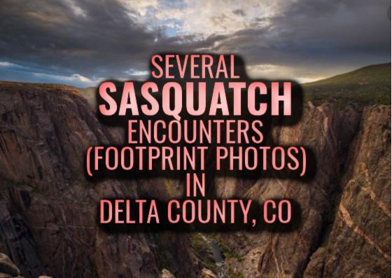 Several Sasquatch Encounters (Footprint Photos) in Delta County, Colorado