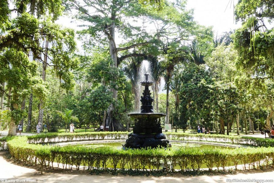 10. Botanical Garden of Rio de Janeiro, Brazil.