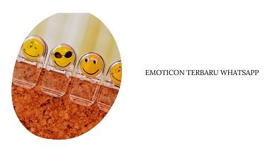 Emoticon Whatsapp Terbaru dan Artinya 2021
