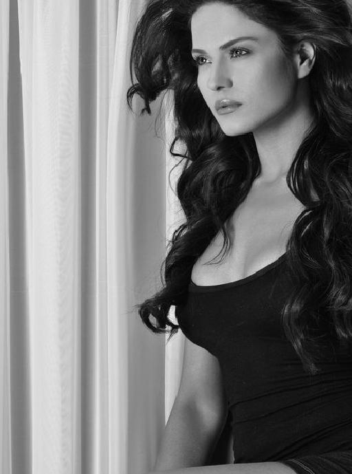 Veena Malik Hot And Sexy Pics - Spicy Hot Celeb-6108