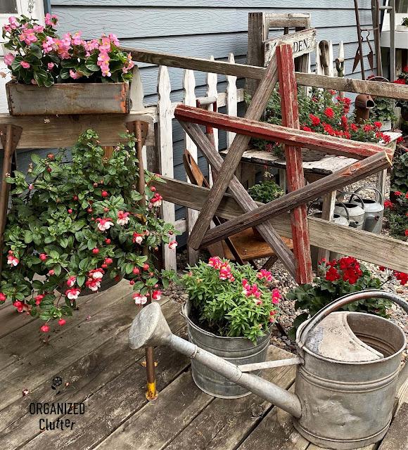 Photo of a junk garden vignette with fuchsias, begonias, & snapdragons
