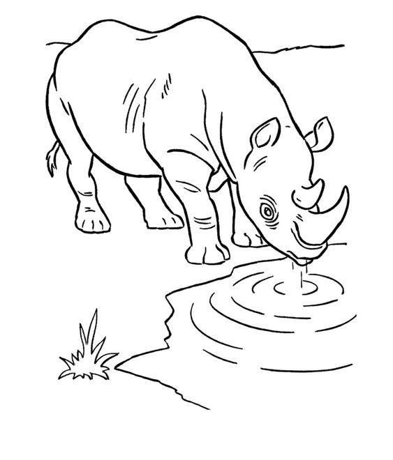 Tranh tô màu con tê giác