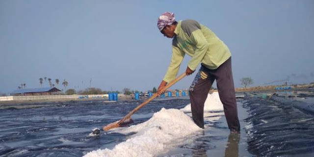 Fahri Hamzah: Ajaib Memang, Negara Kepulauan Masih Impor Garam