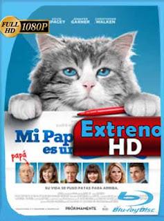 Mi papá es un gato 2016 HD [1080p] Latino [GoogleDrive] DizonHD