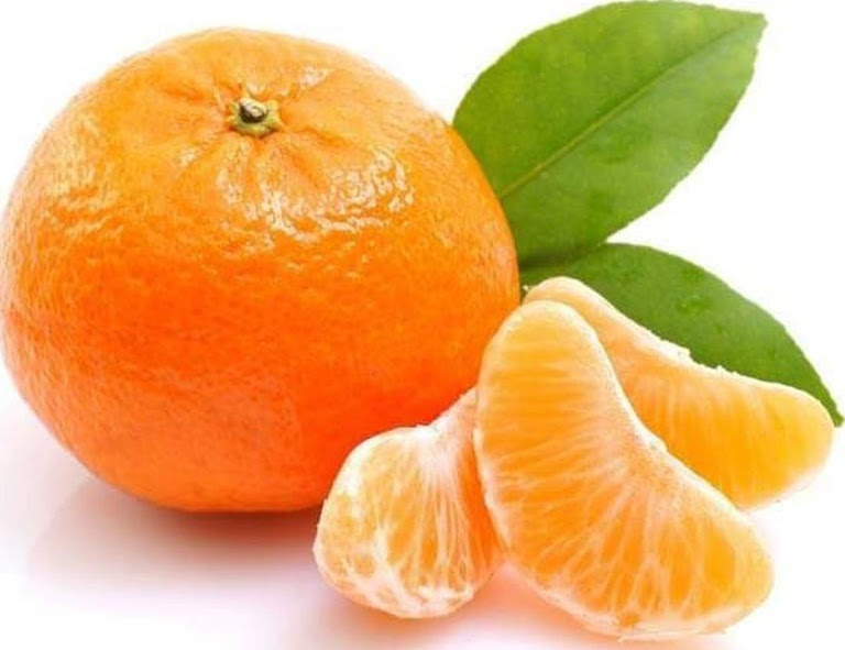 Bibit Benih Seeds Buah Jeruk Manis Mandarin Ponkam Isi 10 Biji Parepare
