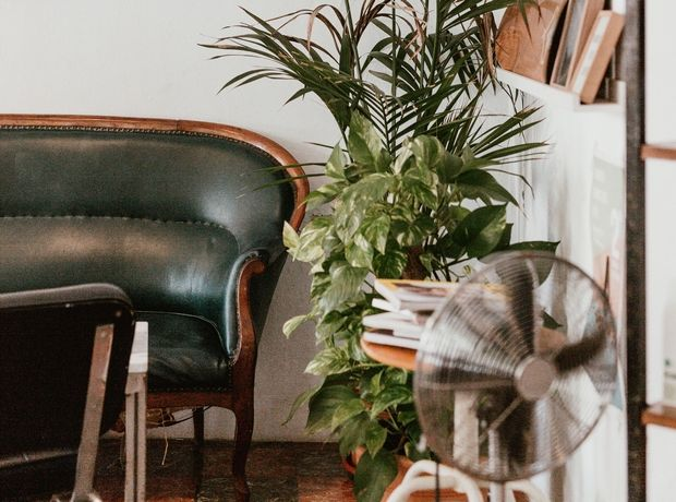 Φενγκ Σούι: Τα πιο γρουσούζικα πράγματα μέσα στο σπίτι