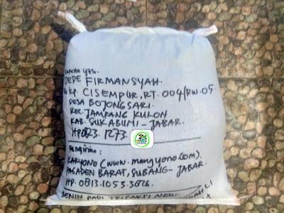 Benih padi yang dibeli   DEDE FIRMANSYAH Sukabumi, Jabar.  (Setelah packing karung ).