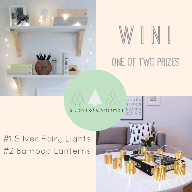 quality design efab5 069ad T.D.C: 12 Days of Christmas | The Fairy Light Shop Giveaway!