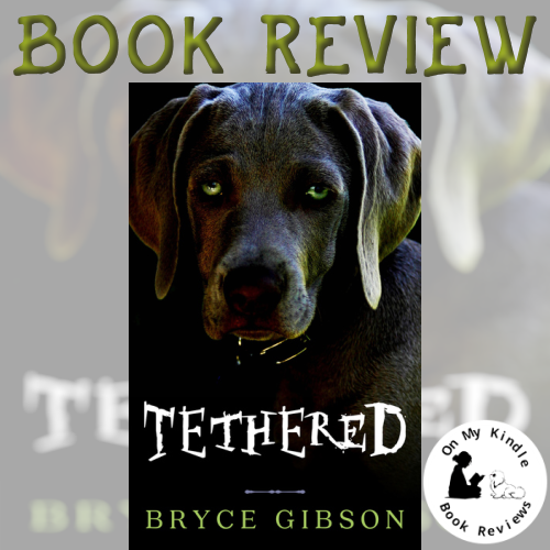 Front cover social media image of 'Tethered' by Bryce Gibson