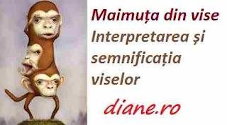 Interpretarea și semnificația viselor maimuta