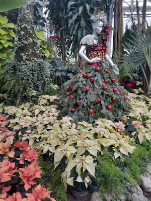 Allan Gardens Conservatory 2019 Winter Flower Show seventeen by garden muses--not another Toronto gardening blog