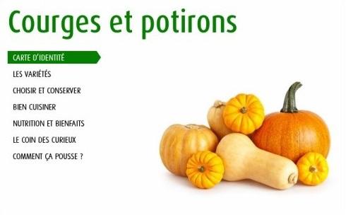 http://www.lesfruitsetlegumesfrais.com/fruits-legumes/courges/courges-et-potirons/carte-identite#content