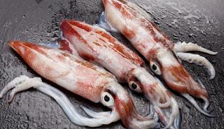 cumi yaitu salah satu seafood yang mempunyai banyak penggermas Manfaat Mengkonsumsi Cumi-Cumi Bagi Kesehatan Tubuh