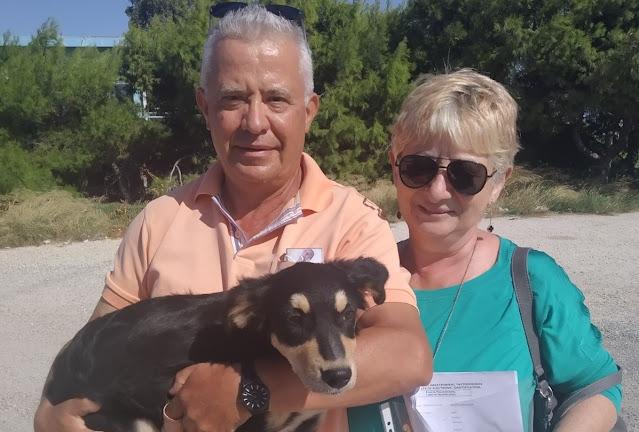 """Από το Ναύπλιο στη Ναύπακτο ταξίδεψε η """"Κάρυ"""" για τη νέα της οικογένεια"""