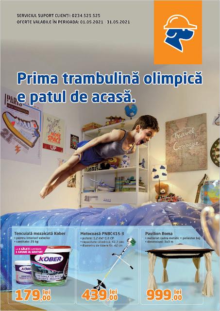 DEDEMAN Catalog - Brosura 1-31.05 2021→ ONLINE SHOPPING