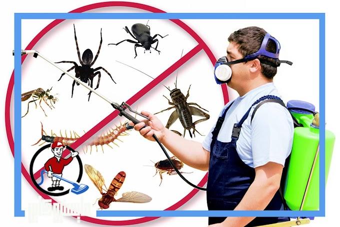 تقدم شركة مكافحة حشرات بالدوادمى حلولا مبتكرة وفعالة في القضاء علي الحشرات سعيا بان نكون افضل شركة مكافحة حشرات بالدوادمى تواصل معنا الان 0507843863