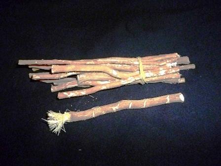 Manfaat kayu siwak atau miswak