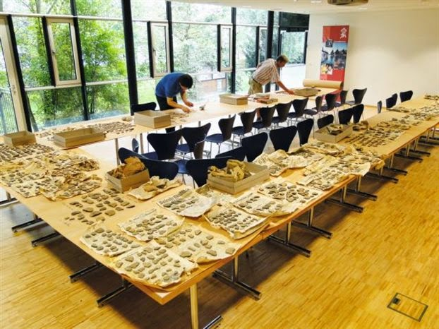 Antiquities looted by Nazis to be repatriated to Greece
