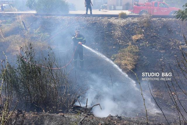 Αργολίδα: Πυρκαγιά σε ρέμα στην Αγία Τριάδα