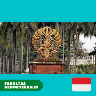 Fakultas Kedokteran Universitas Indonesia (UI)