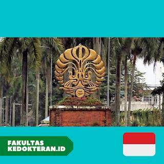 fk Termurah di Indonesia