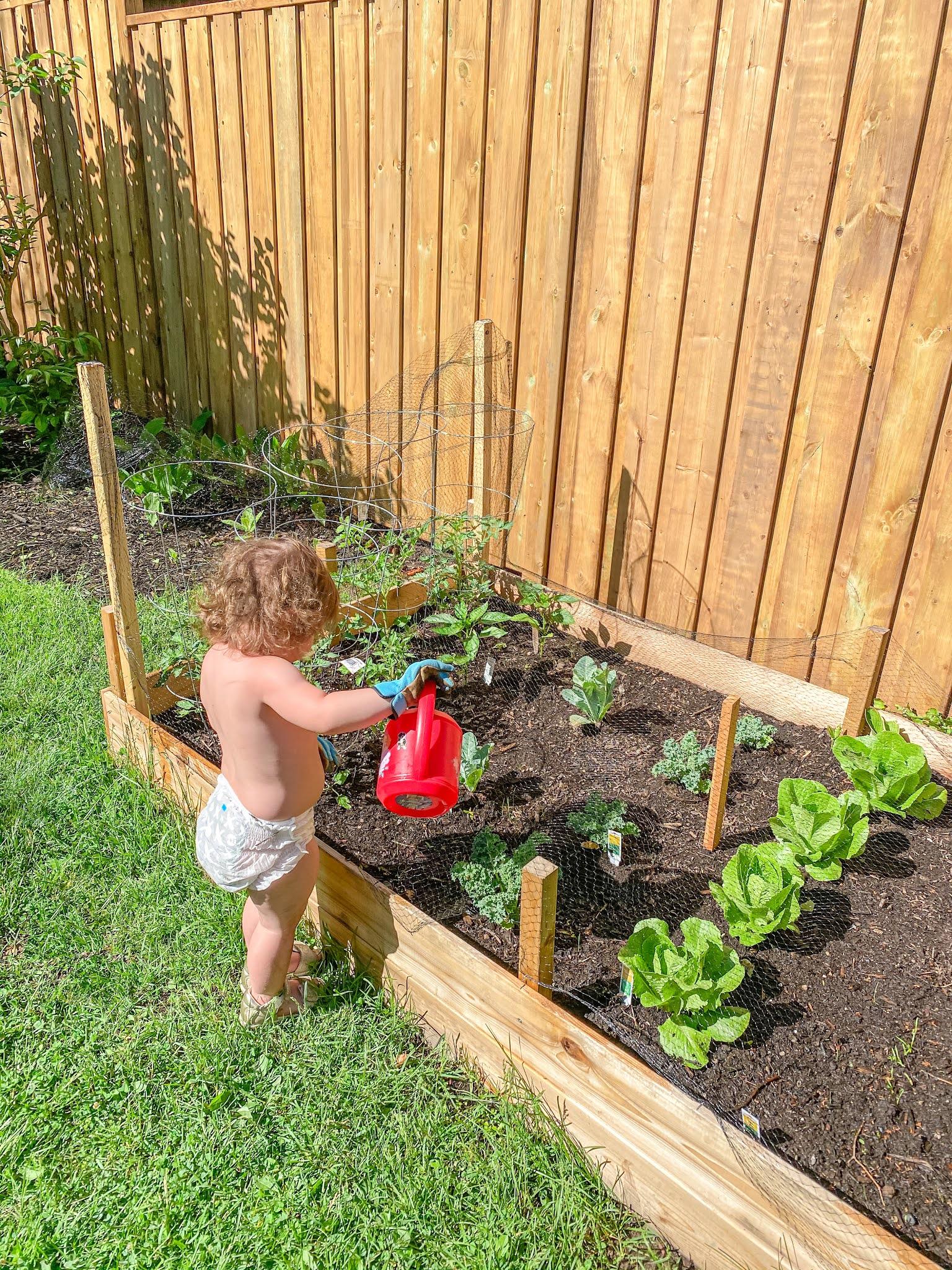 teaching kids about gardening