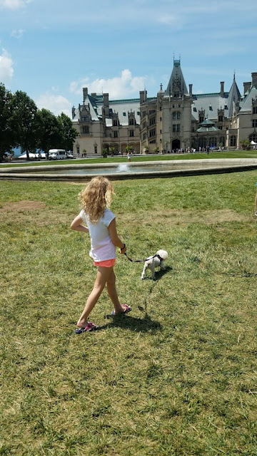 Dogs at the Biltmore Estate in Asheville, NC