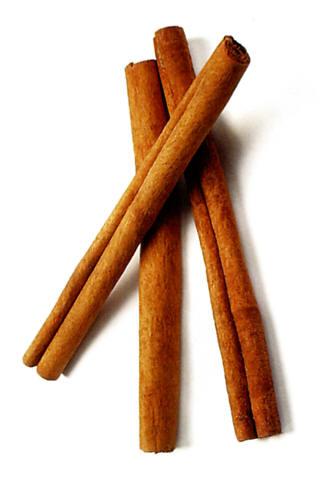 Cinnamon Stick 41