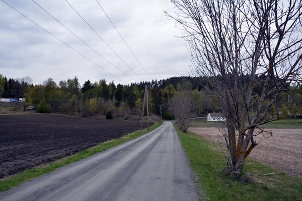 gamleveien