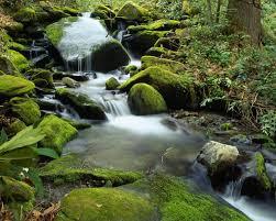 suele decirse la corriente cuando se habla de las aguas, pero también es correcto decir el corriente