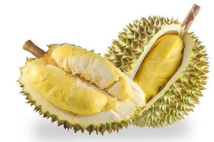 Sejarah dan Manfaat Buah Durian