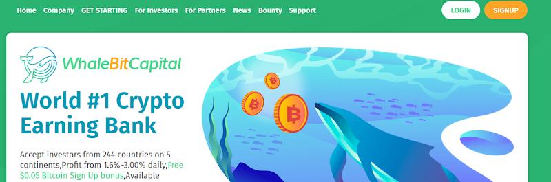 Мошеннический сайт whalebitcapital.com – Отзывы, развод, платит или лохотрон? Информация