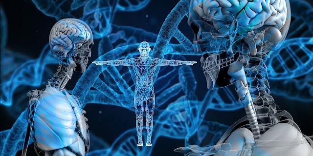 Istilah-istilah dalam Genetika