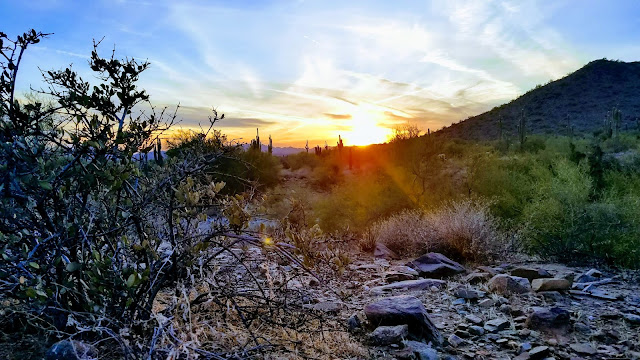 Hiking McDowell Sonoran Preserve