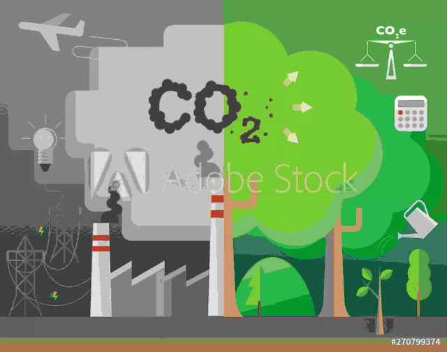 Carbon Footprint Definition, Causes, Effects & Solutions-1
