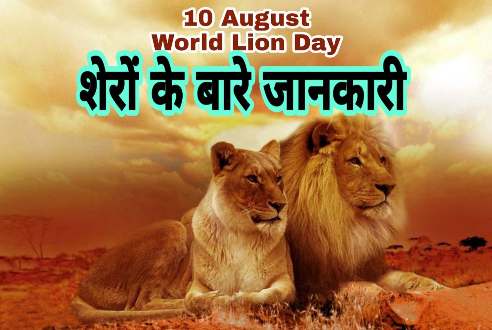Information about Lion in Hindi | World Lion Day 2019 | जंगल के राजा शेर के बारे में रोचक तथ्य